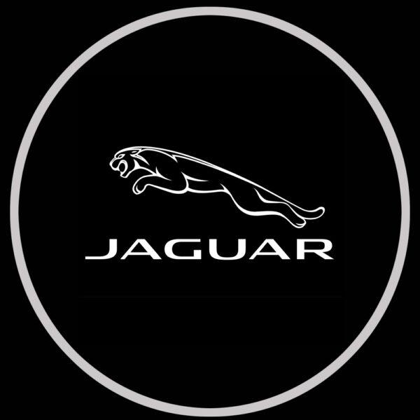 Jaguar xf puddle lights