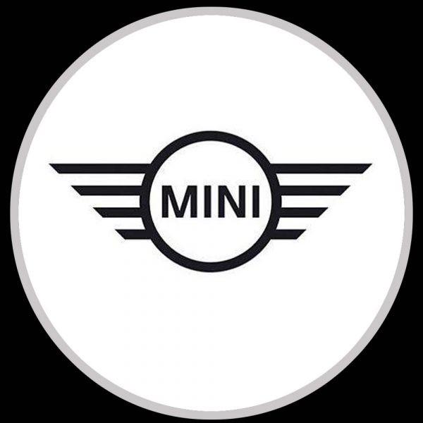 mini logo door lights